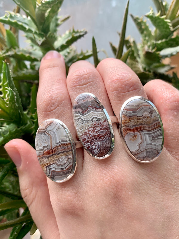 Crazy Lace Agate Medium Akoni Rings - Jewels & Gems