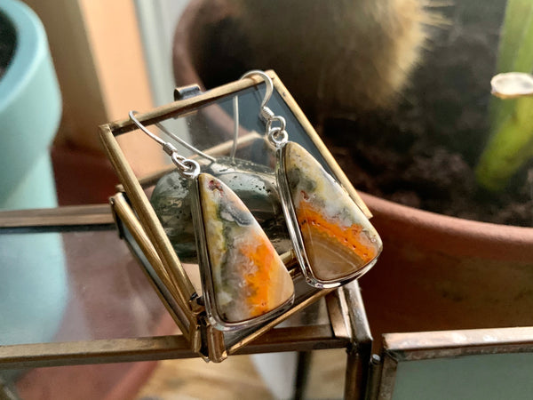 Bumblebee Jasper Triangle Ari Earrings - Jewels & Gems