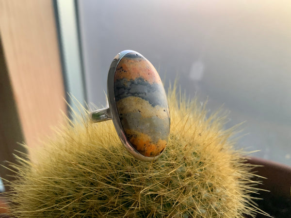 Bumblebee Jasper Large Akoni Rings (One of a kind) - Jewels & Gems