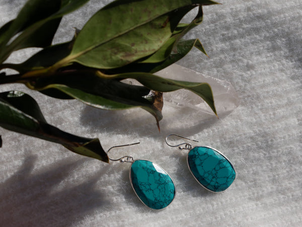Turquoise Adora Earrings - Jewels & Gems