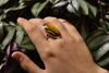 Tiger's Eye Ariel Ring - XLarge Oval (US 7) - Jewels & Gems