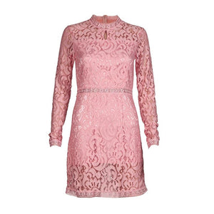 Sexy Pink Hollow Out Lace Long Sleeve Slim MIni Dress