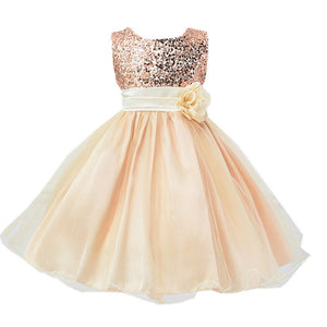 Hot Selling Flower sequins  Princess Dress High quality