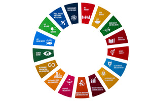 SDG Wheel Wall Decoration (Boards)