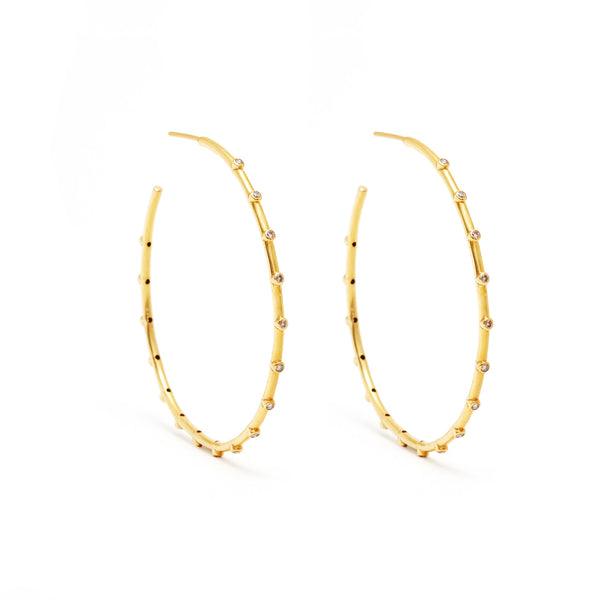 JAJ1070 Diamond branch hoop earrings