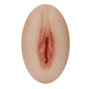 Fixed vagina option for sex dolls