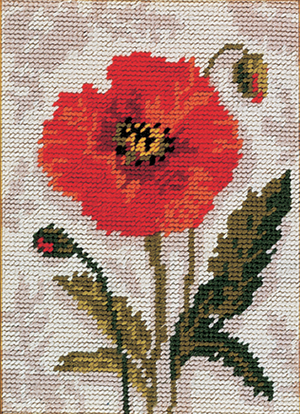Anchor Poppy - Starters Needlepoint Tapestry Kit - Button Blue Crafts