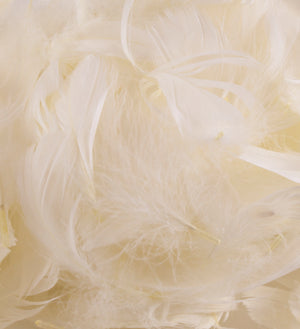 "Ivory 1st Grade Marabou Feathers - Mixed Sizes 3"" - 8"" - Eleganza - Button Blue Crafts"
