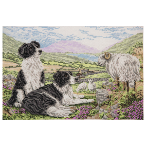 Anchor Counted Cross Stitch Kit - Collies - Sheepdogs - Rural Life - Button Blue Crafts