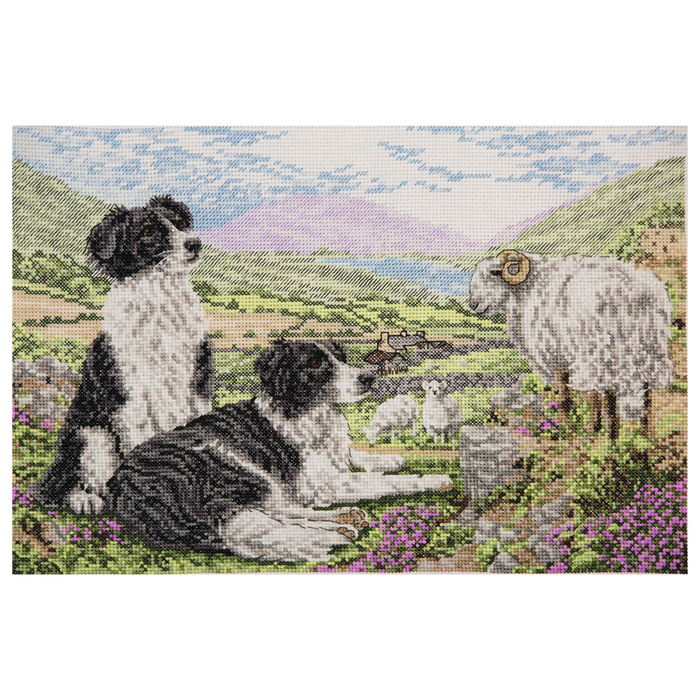 Anchor Counted Cross Stitch Kit - Collies - Sheepdogs - Rural Life