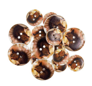 Red Squirrel - British Wildlife Wooden Craft Buttons - Pack of 15 - CFB058 - Button Blue Crafts