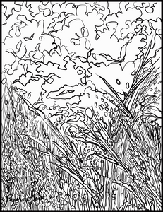 Twilight Flight Coloring page download FREE