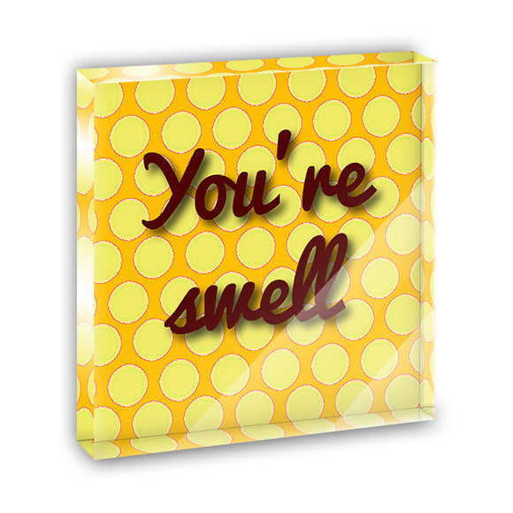 You're Swell Polka Dot Fun and Friends Acrylic Office Desk Plaque Paperweight