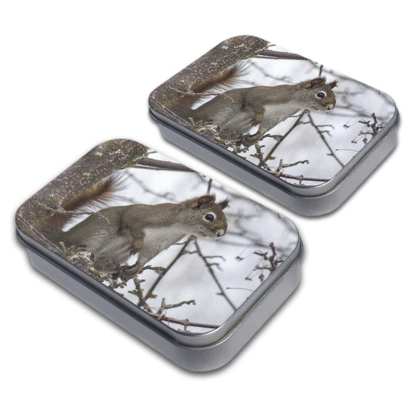 Winter Forest Tree Squirrel Decorative Craft Trinket Metal Tin Box Set of 2