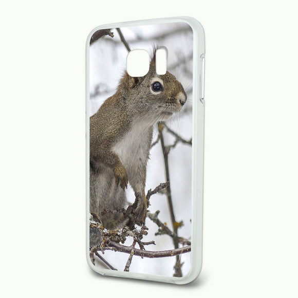 Winter Forest Tree Squirrel Slim Fit Hybrid Case Fits Samsung Galaxy S6