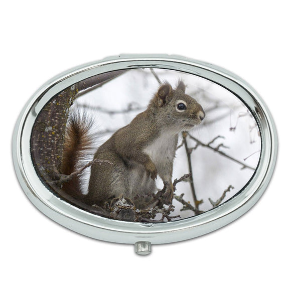 Winter Forest Tree Squirrel Metal Oval Pill Case Box