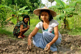 Support Sustainable Agriculture Training