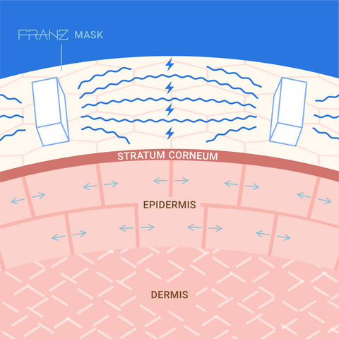 What is Tissue X® and how it works by Franz Skincare
