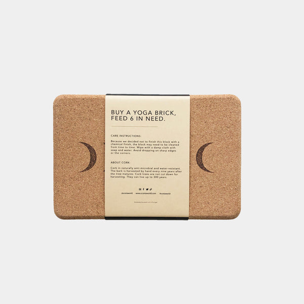 moon phase cork yoga blocks pair scoria