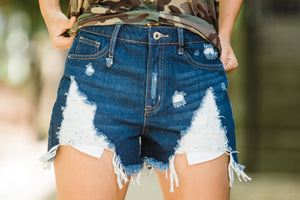 The Everly High Waist Distressed Shorts - Face 2 Soul Beauty Boutique