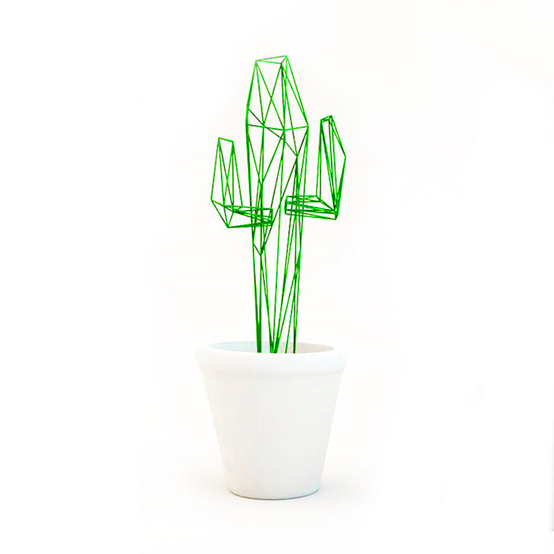 products/n10lab-cactus-1.jpg