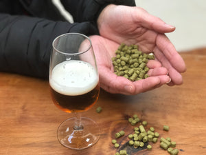 Ed's Top Five Hops