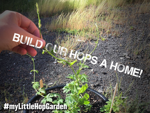Build Our Hops a Home!