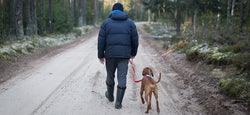 Dudes and Dogs - Getting men together to walk and talk
