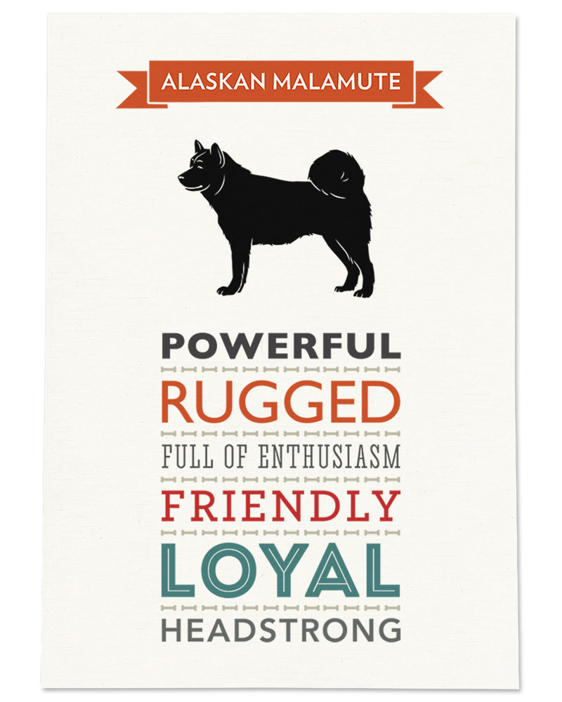 Alaskan Malamute Dog Breed Traits Print