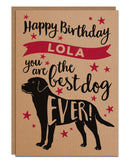 Birthday Card for the dog