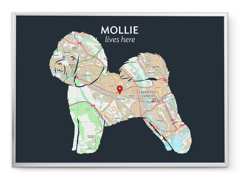 Personalised Bichon Frise Map Print