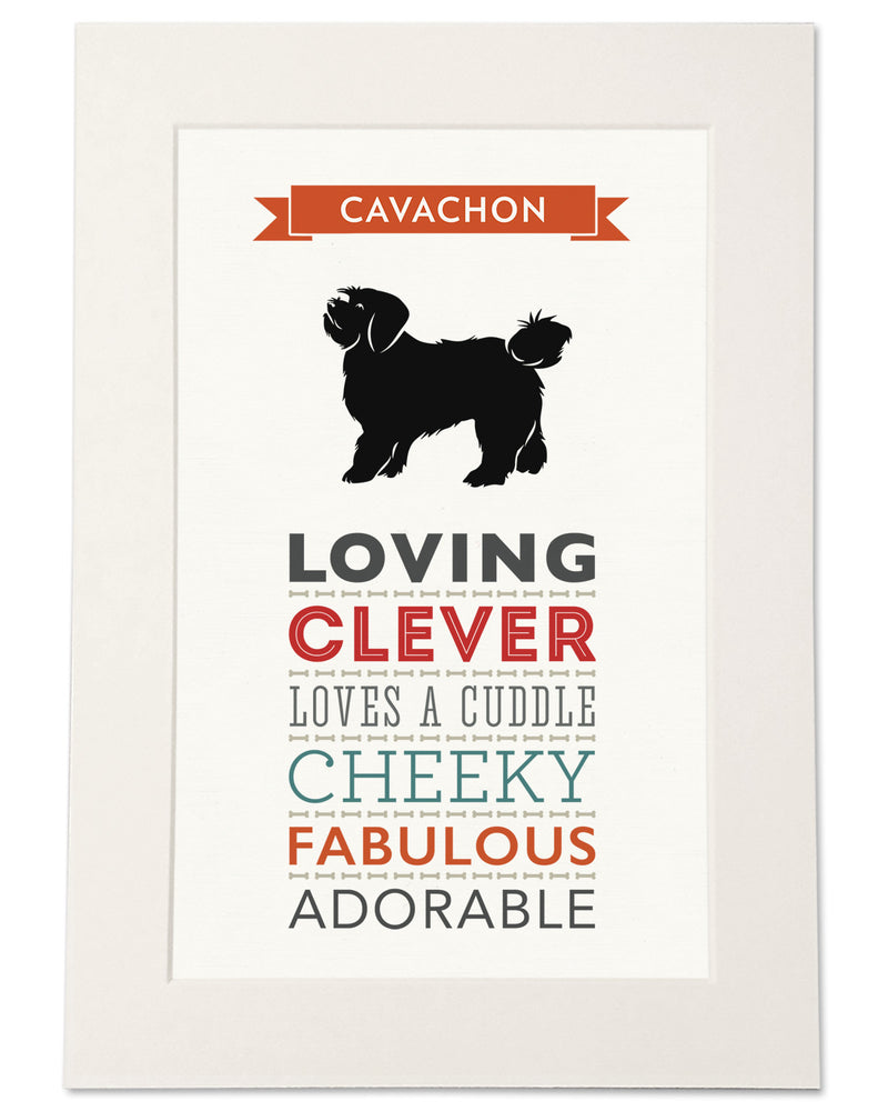 Cavachon Dog Breed Traits Print