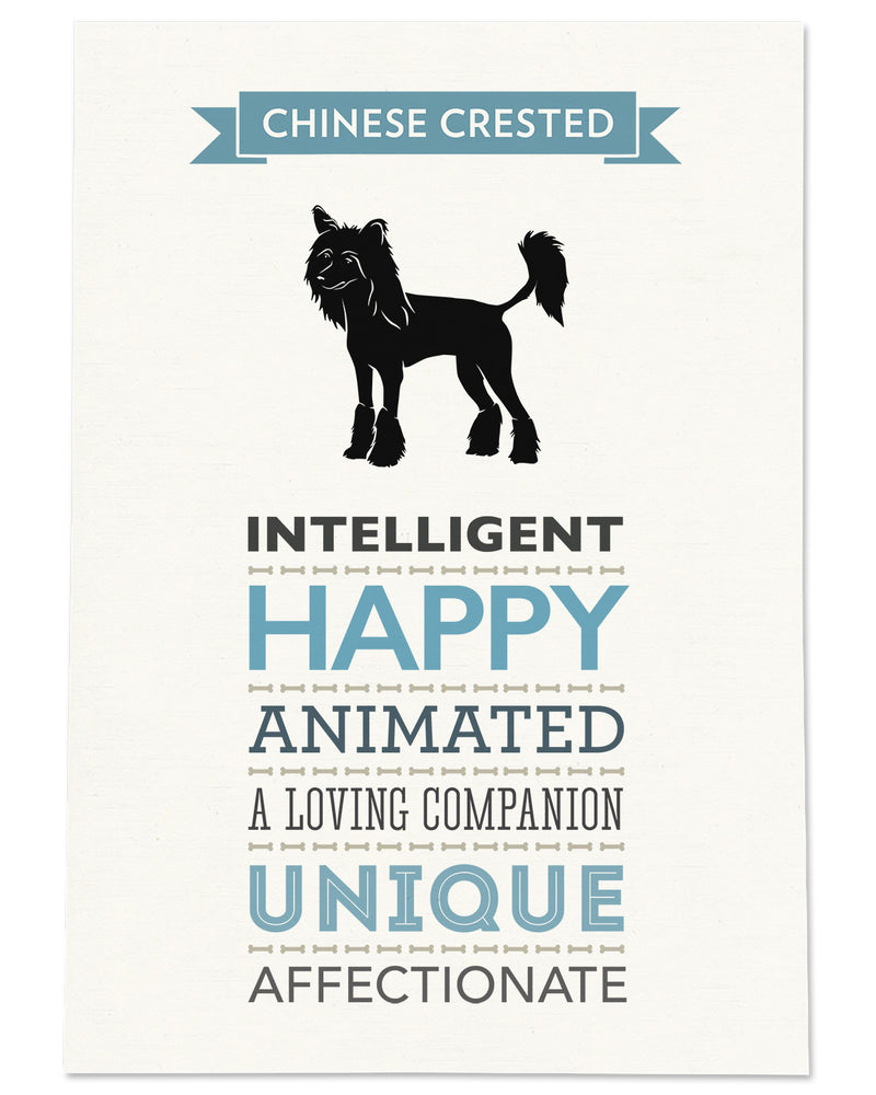 Chinese Crested Dog Breed Traits Print