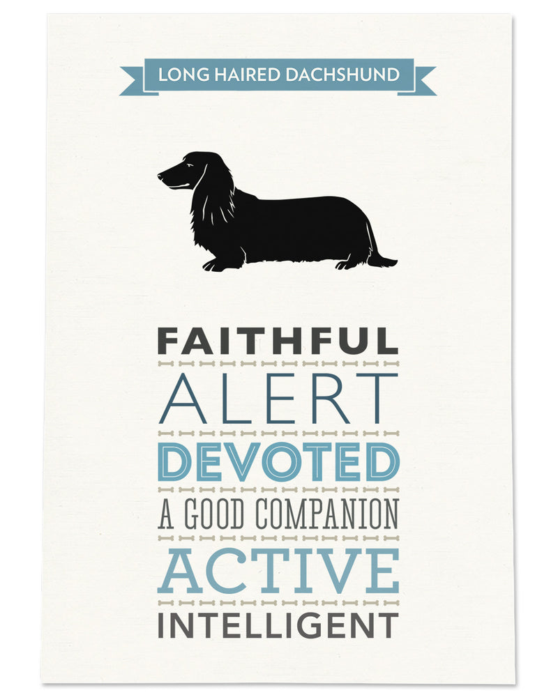 Long Haired Dachshund Dog Breed Traits Print