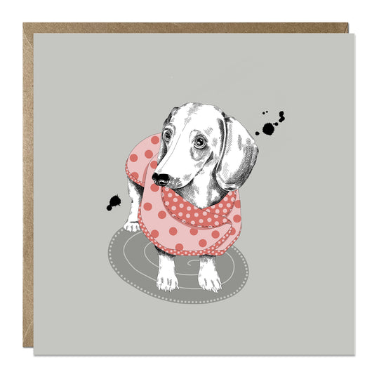 'Dachshund in jumper' card with Sausage Dog
