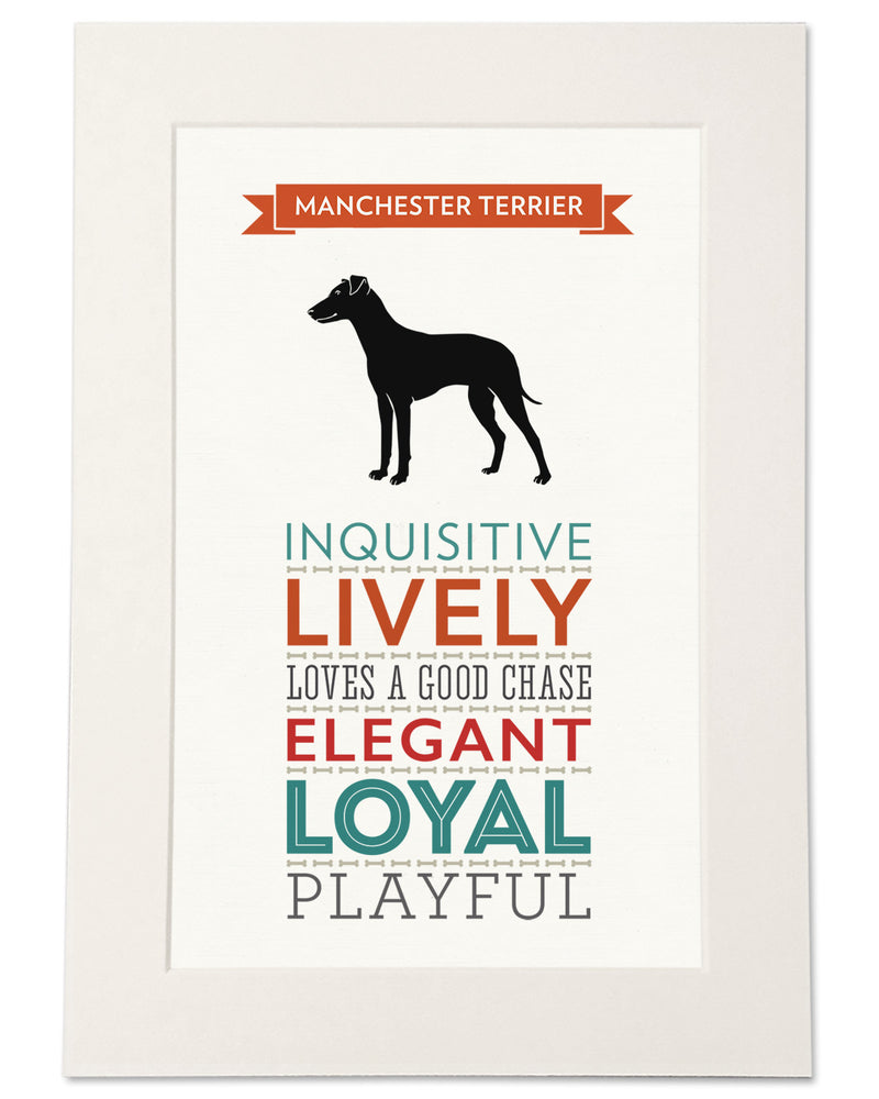 Manchester Terrier Dog Breed Traits Print