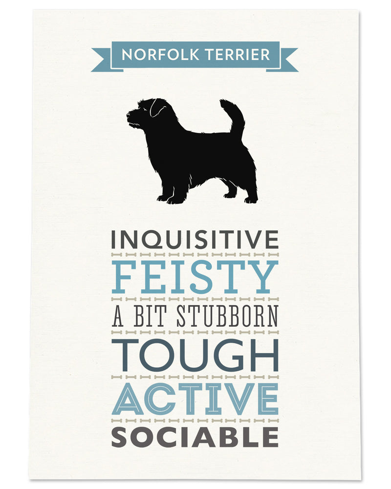 Norfolk Terrier Dog Breed Traits Print