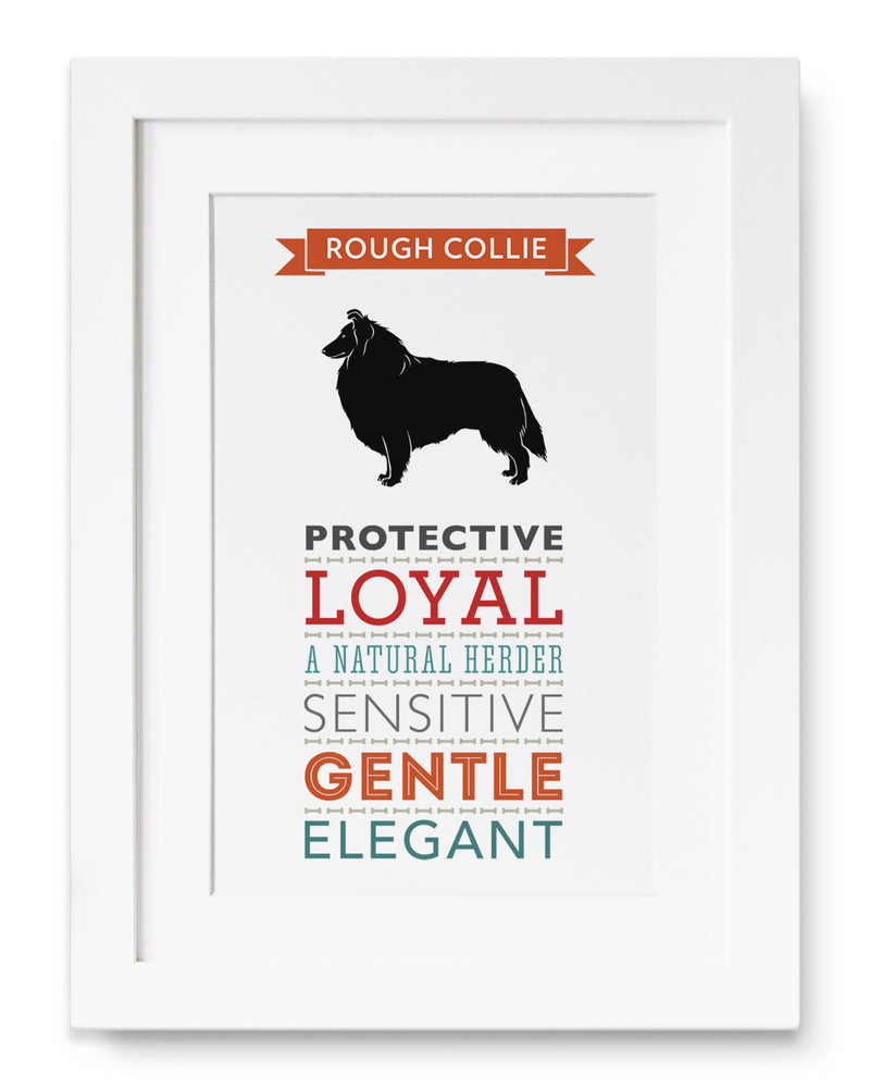 Rough Collie Dog Breed Traits Print