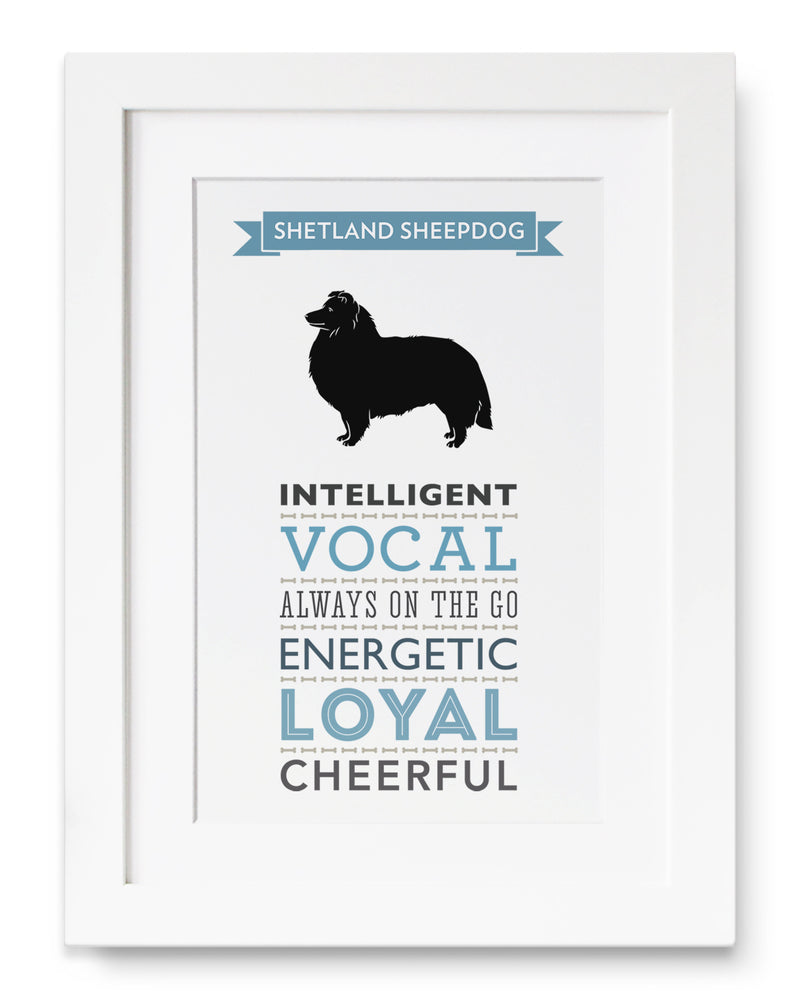 Shetland Sheepdog Dog Breed Traits Print