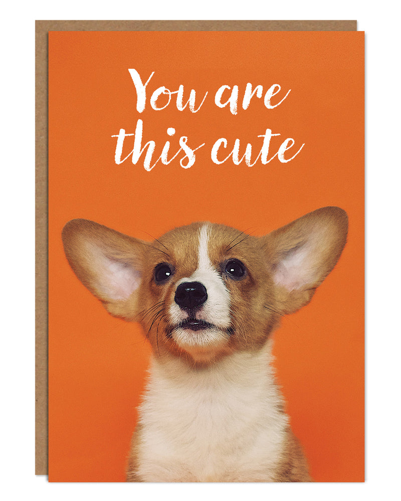 'You Are This Cute' Birthday Card with Corgi