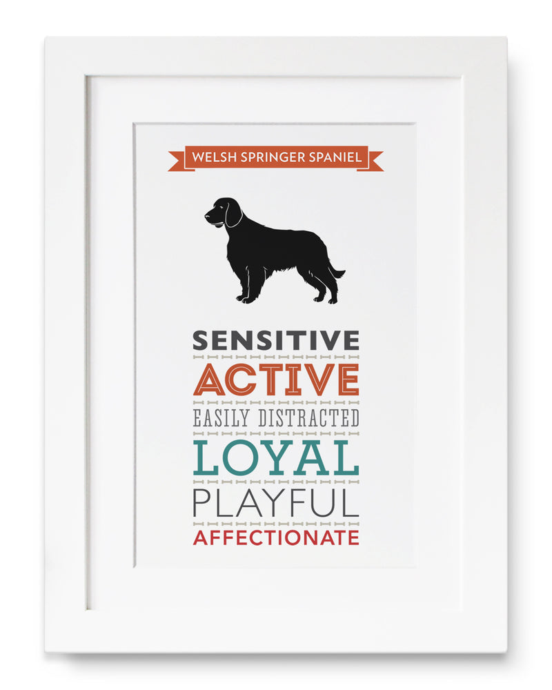 Welsh Springer Spaniel Dog Breed Traits Print