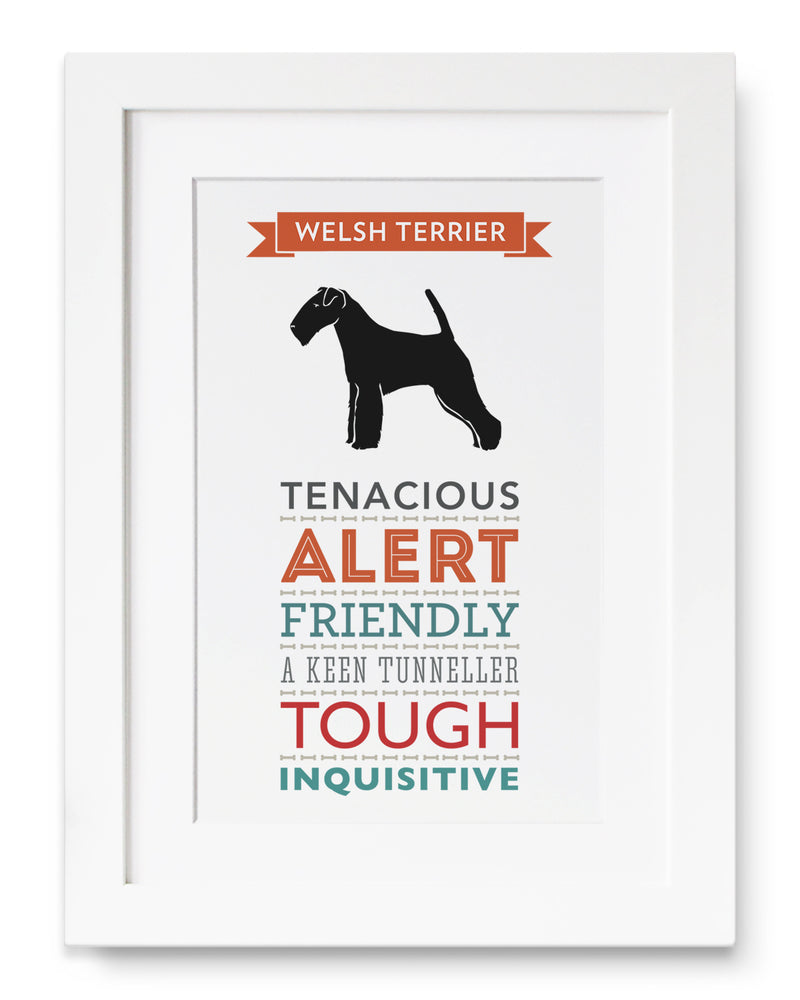 Welsh Terrier Dog Breed Traits Print