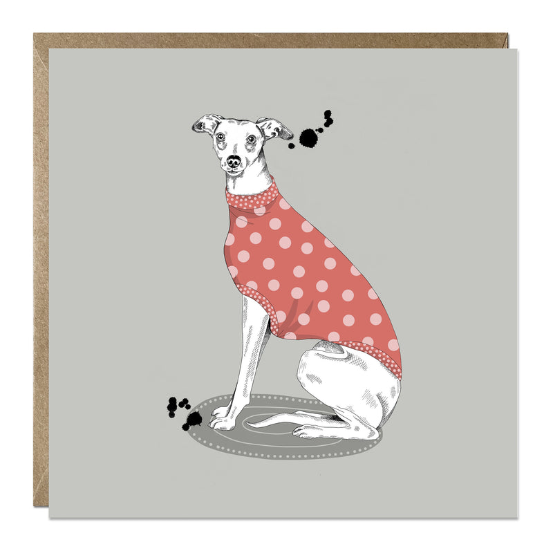 'Whippet in Spotty Jumper' card for any occasion
