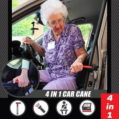 Car Cane- Get one for your family