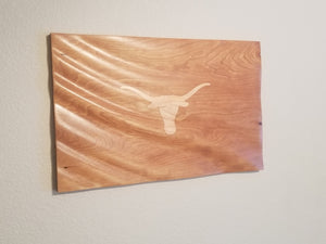 Texas Longhorns 3D Waving Flag
