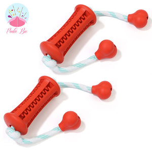 2-in-1 Canine Dental Chew Toy
