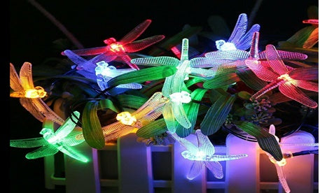 Solar Dragon Flies!