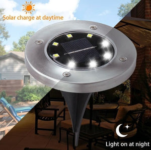 Solar Garden Lights ( 8LED ), BUY 1, TAKE 1 FREE!!!