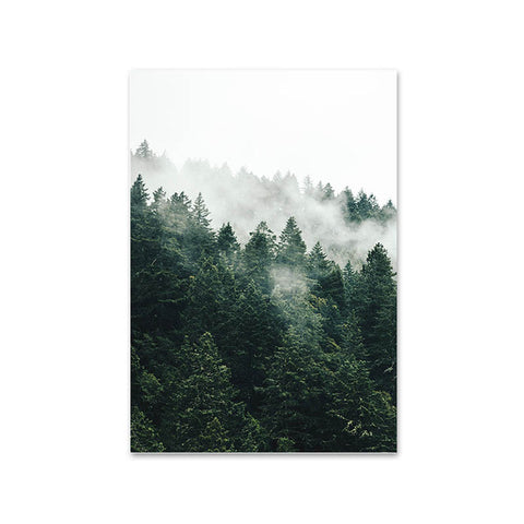 Mountain Fog Forest Picture - Oddites