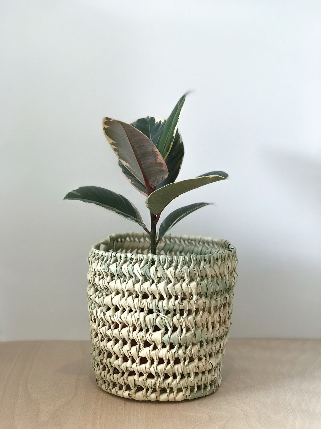 Small Woven Plant Basket